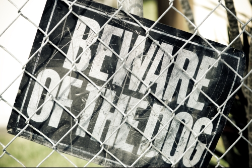 Picture of beware of dog sign