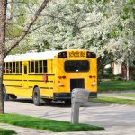 Were the Recent School Bus Accidents Caused by Illegal Passing?