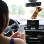 Study Finds Troubling Facts About Distracted Teen Drivers